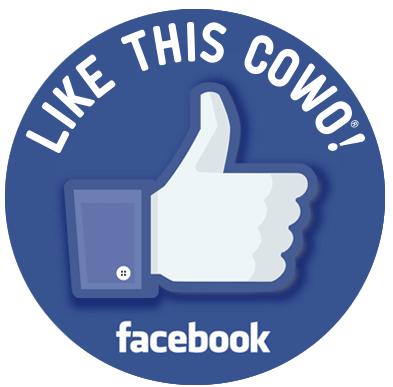 Pagina Facebook Verona Sud